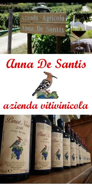 Azienda Vitivinicola Anna
